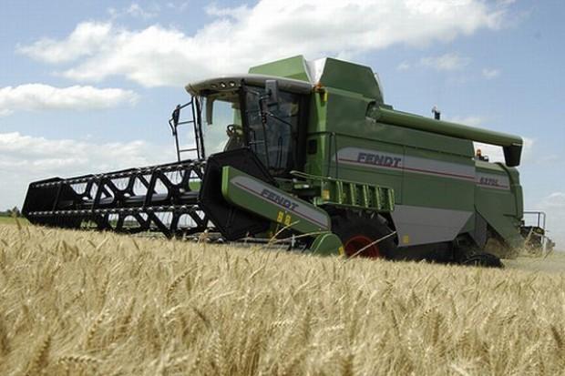 Zbiory dobiegają końca, ceny zbóż nie zmieniają się