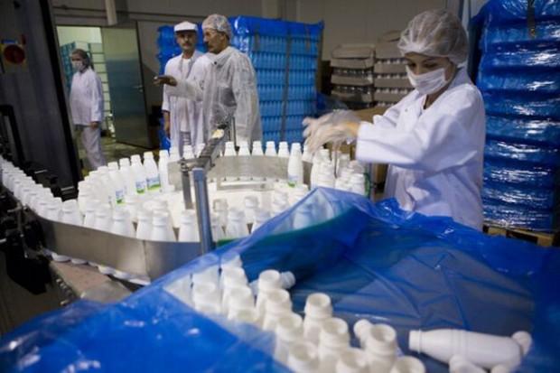 Spada eksport przetworów mleczarskich