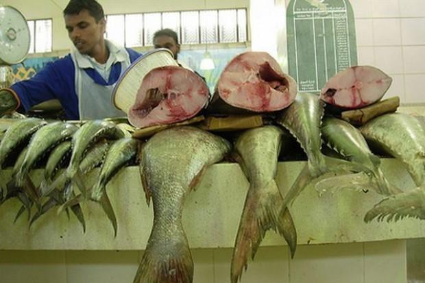 Sześciu dystrybutorów ryb z całej Polski powołało Polskie Centrum Dystrybucji Ryb