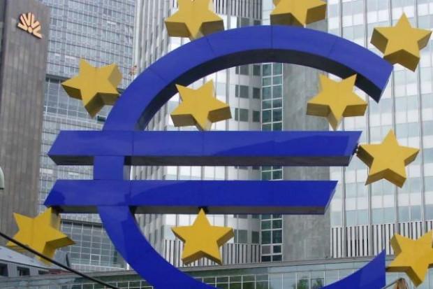 Dzięki słabemu euro polscy rolnicy dostaną dużo wyższe dopłaty bezpośrednie, kurs przeliczenia to 4,2295 Euro/PLN