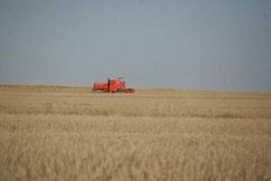 Producenci żywności w Europie przeżywają poważny kryzys