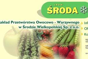 Dzięki aukcji internetowej, ZPOW w Środzie Wielkopolskiej zapłaci mniej za prąd