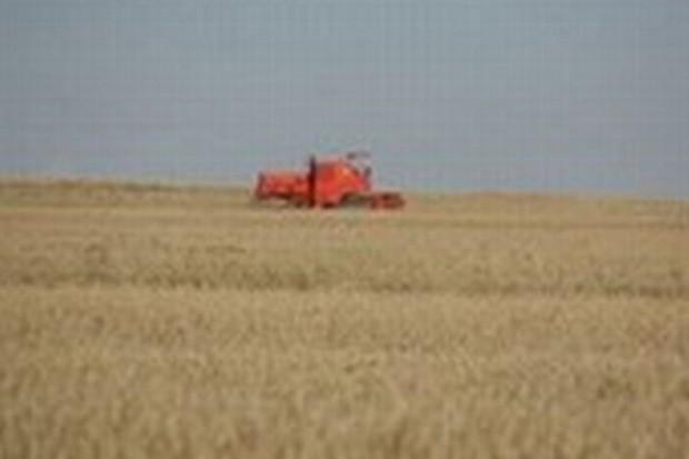 Rolnicy muszą zwrócić dopłaty, bo urzędnicy się pomylili