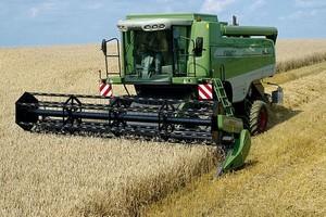 KE: Nie będzie subsydiów eksportowych dla zbóż