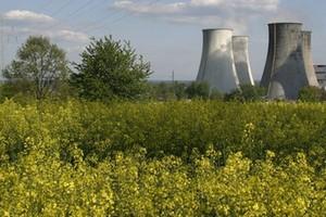 Jeszcze przez 10 lat rośliny wykorzystywane na cele żywnościowe będą surowcem dla biopaliw