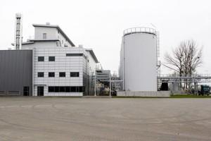Elstar Oils liczy na dalszą poprawę wyników w 2010 roku