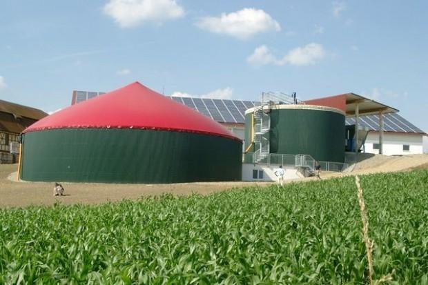 W I kw. 2010 r. ruszy budowa pierwszej biogazowni Wikany