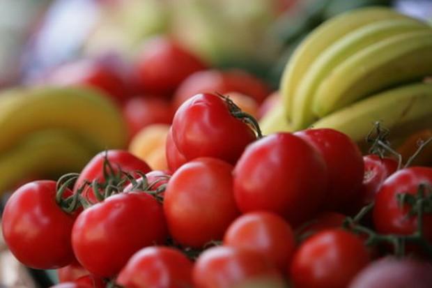 2010 r. przyniesie rekordowe zbiory pomidorów