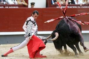 Hiszpania: W Katalonii ostry spór o korridę
