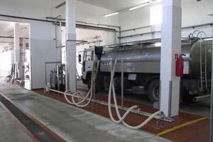 Polska eksportuje coraz mniej produktów mleczarskich