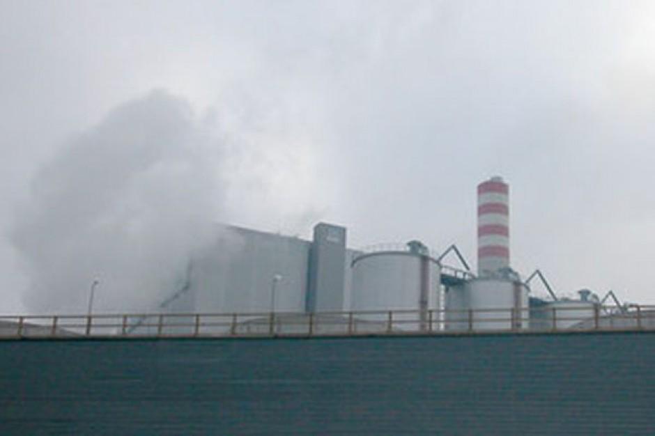Rząd zgodził się na spalanie zbóż w elektrowniach