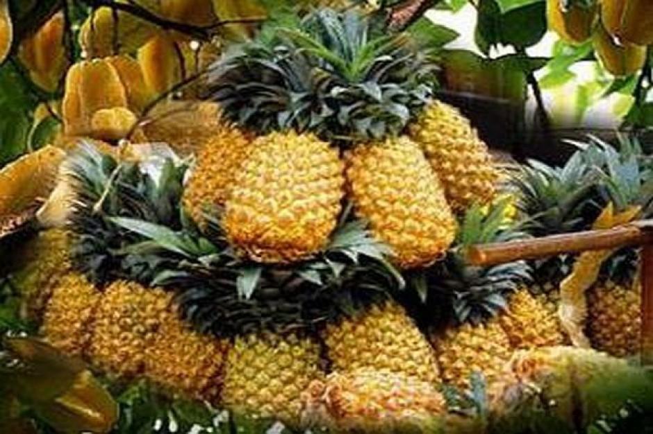 Rosną ceny ananasów