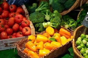 Nieznaczny spadek wolumenu zbiorów warzyw w krajach UE