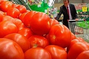 Ubiegłoroczne zbiory pomidorów w Hiszpanii sporo wyższe w porównaniu z poprzednim rokiem
