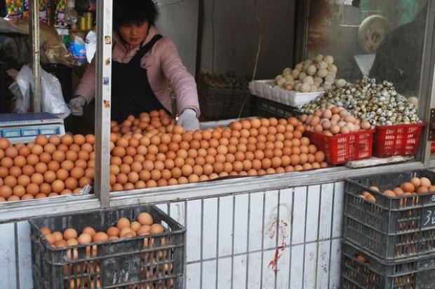 Wkrótce w sklepach kupimy jajka tylko od zadowolonych z życia kur