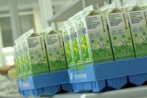 Ożywienie blokuje konsolidację w mleczarstwie