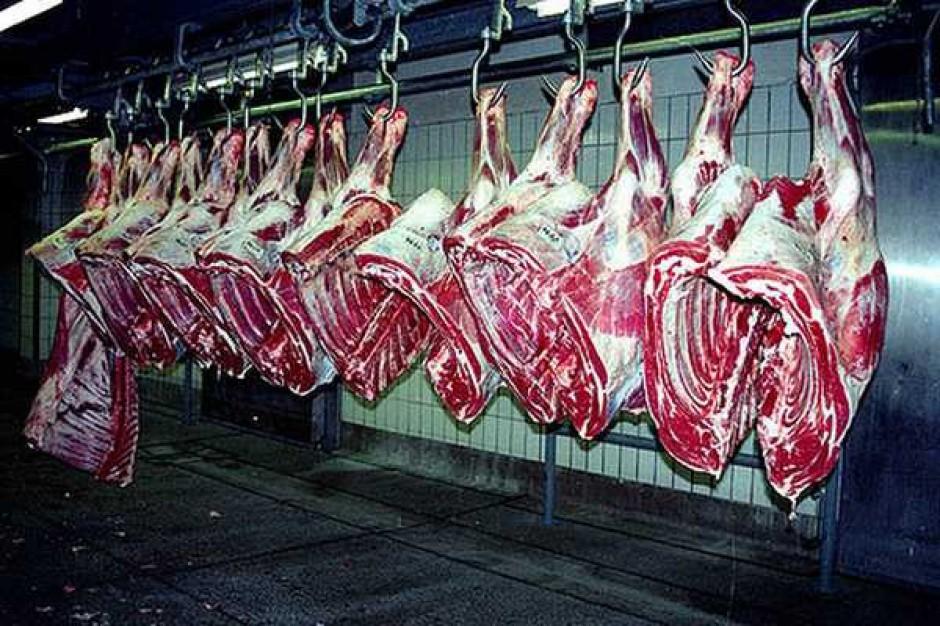 Światowy popyt na wołowinę ciągle spada