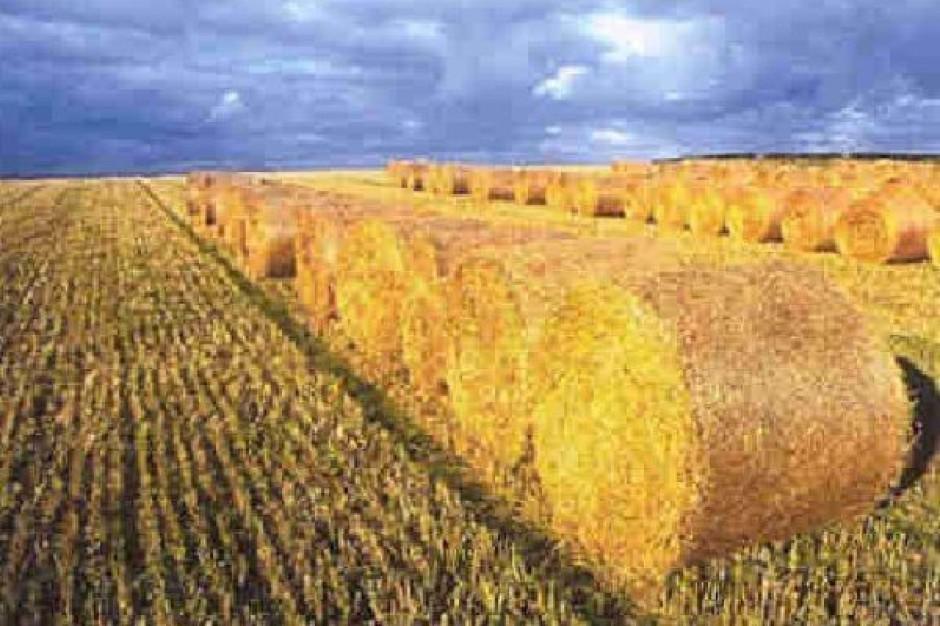 Unijny komisarz ds. rolnictwa  chce reformy unijnej polityki rolnej