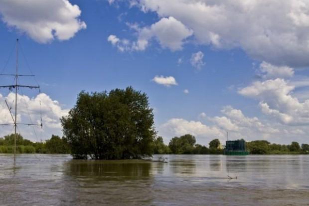Resort rolnictwa: Pełne oszacowanie strat w rolnictwie jeszcze nie możliwe. Pracujemy nad pakietem pomocy dla powodzian