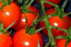 Agros Nova: Heinz przeprosił siebie w naszym imieniu