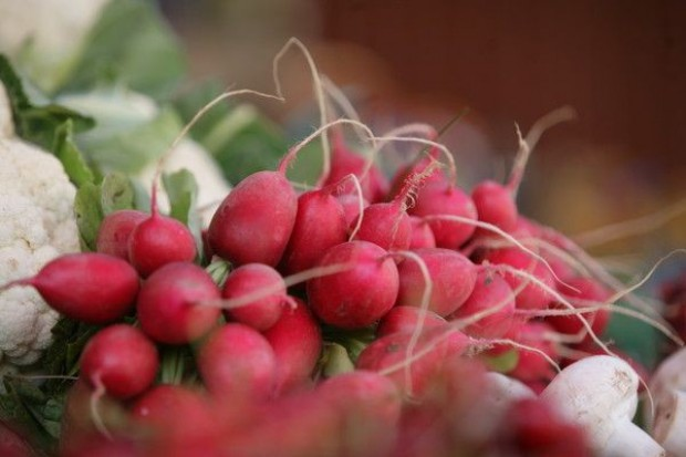 Niebezpieczna żywność po powodzi sprzedawana na targowiskach?