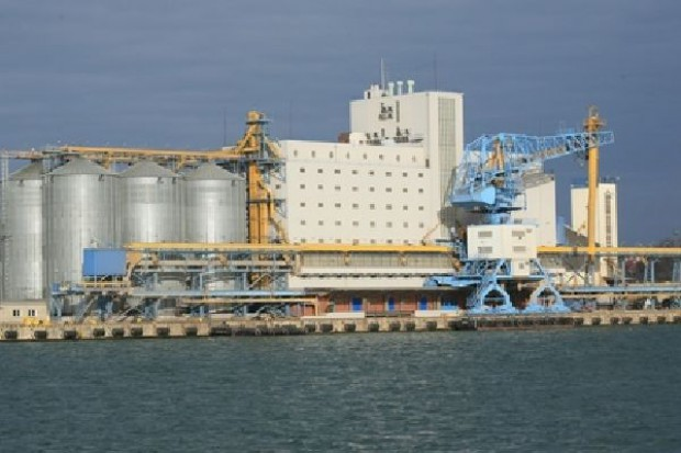 W tym roku w Gdańsku może ruszyć port zbożowy