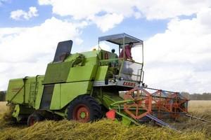 Na światowych giełdach gwałtownie rosną notowania zbóż