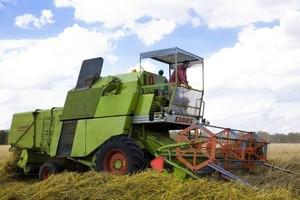 Strategie Grains obniżyło prognozę zbiorów zbóż w UE w 2010 r. o 5,3 proc.