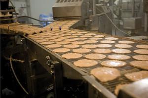 W 2010 r. wartość leasingu branży spożywczej może osiągnąć 300 mln zł