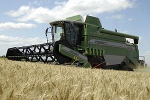 Strategie Grains: Zbiory zbóż w UE w sezonie 2010/11 wyniosą 274,8 mln ton