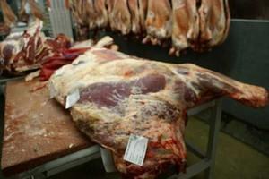 Spadły ceny bydła rzeźnego