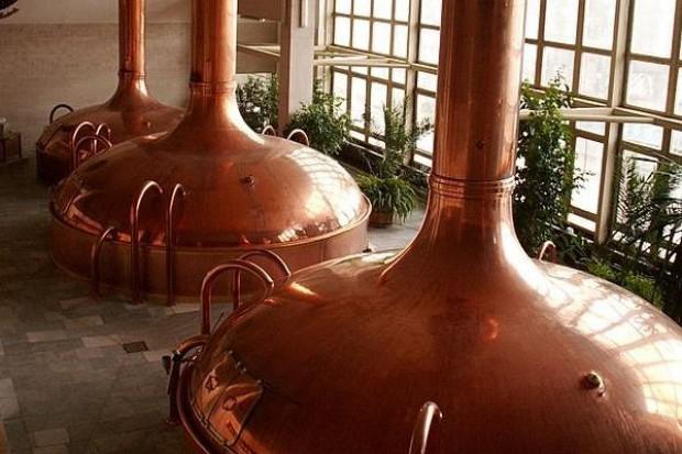 Branża piwowarska w Polsce zamknie 2010 rok na minusie