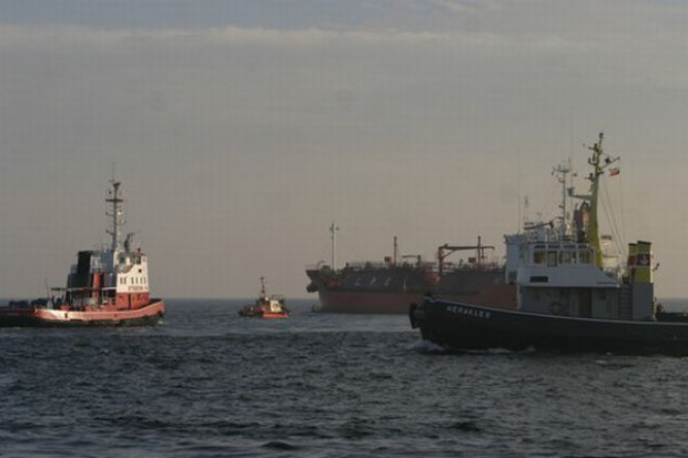 Polskim rybakom grozi ograniczenie połowów szprota i śledzia