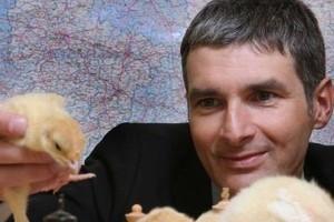 Prezes Indykpolu: W 2010 r. poziom eksportu drobiu jest najwyższy w historii