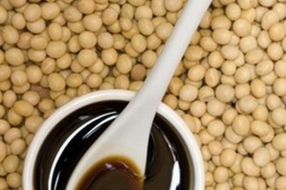 Soja na światowych rynkach wciąż jest droga