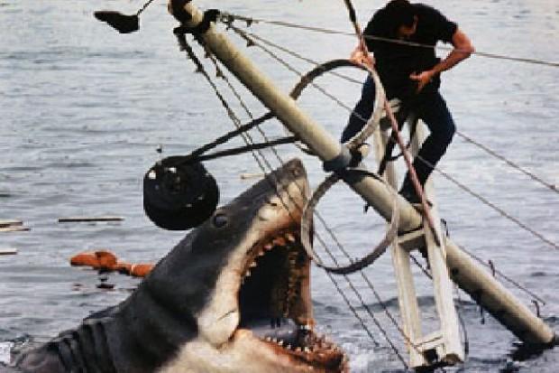 Znowu zamknięte plaże w Szarm - strach przed rekinami