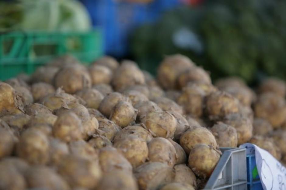 Mniej ziemniaków w Europie