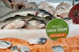 Światowa konsumpcja ryb bije wszystkie dotychczasowe rekordy