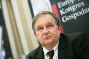 Dyrektor POHiD: W 2011 roku wzrost w handlu może być mniejszy niż w 2010 r.