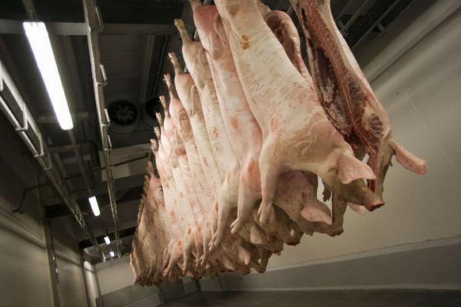 Duże zainteresowanie dopłatami do przechowywania wieprzowiny