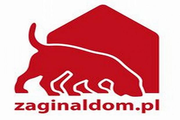 Marzec jest ogólnopolskim miesiącem sterylizacji zwierząt