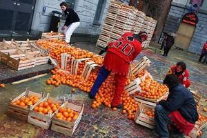 123 osoby ranne w bitwie na pomarańcze