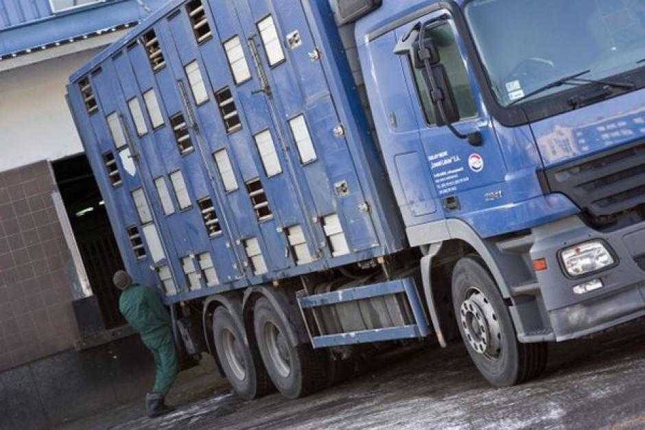 Eksporterzy mięsa na Ukrainę mają problem