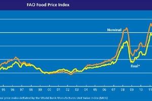 FAO: Ceny żywności mogą znów zacząć rosnąć