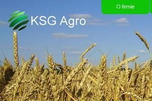 KSG Agro: Tegoroczne plony zbóż będą co najmniej na poziomie ubiegłego roku