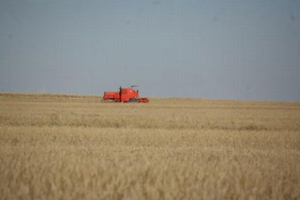 Spada liczba gospodarstw a rolników jest coraz więcej