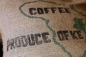 Trzeci miesiąc z rzędu spada średnia cena kawy
