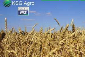 Ukraiński KSG Agro wchodzi na rynek polski