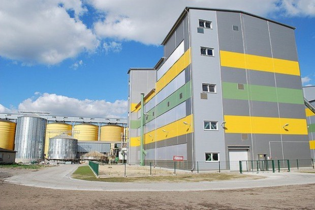 Komornik w Bodaczowie. Zakład wstrzymuje wypłaty należności za zakontraktowany rzepak