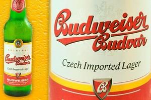Wzrost sprzedaży piw importowanych w Polsce. Budweiser rośnie trzycyfrowo